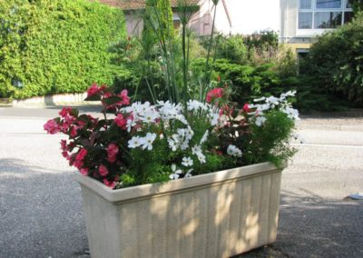 au_jardin_fleuri_été_0018