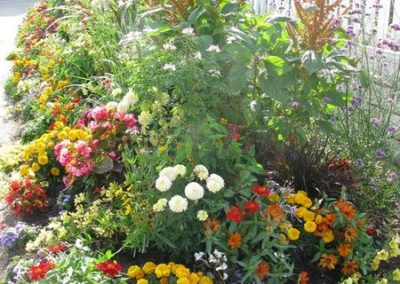 au_jardin_fleuri_été_0019-e1547486748358