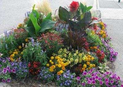 au_jardin_fleuri_été_0021-e1547486744716