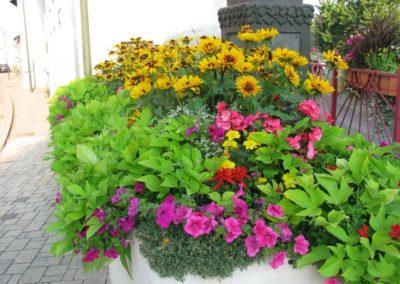 au_jardin_fleuri_été_0022